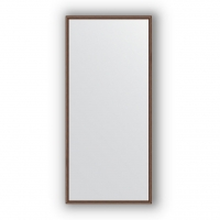 Зеркало в багетной раме (67х147 см)